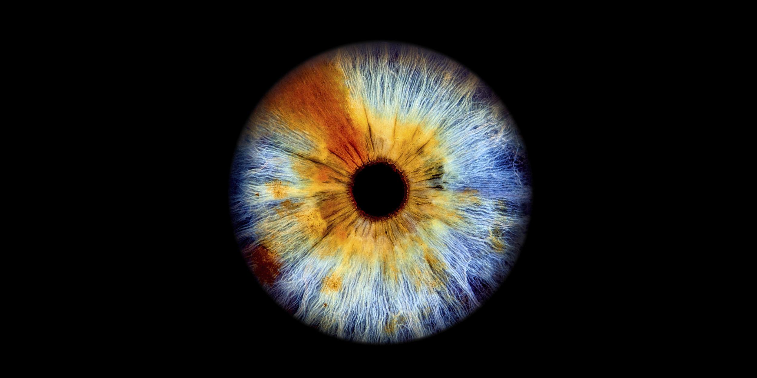 Iris Fotografie Schorndorf Stuttgart das Tor zur Seele Kunstvoll verpackt einzigartiger als ein Fingerabdruck Regenbogenhaut das sehr persönliche Geschenk Kunst Kunstvoll hochauflösend