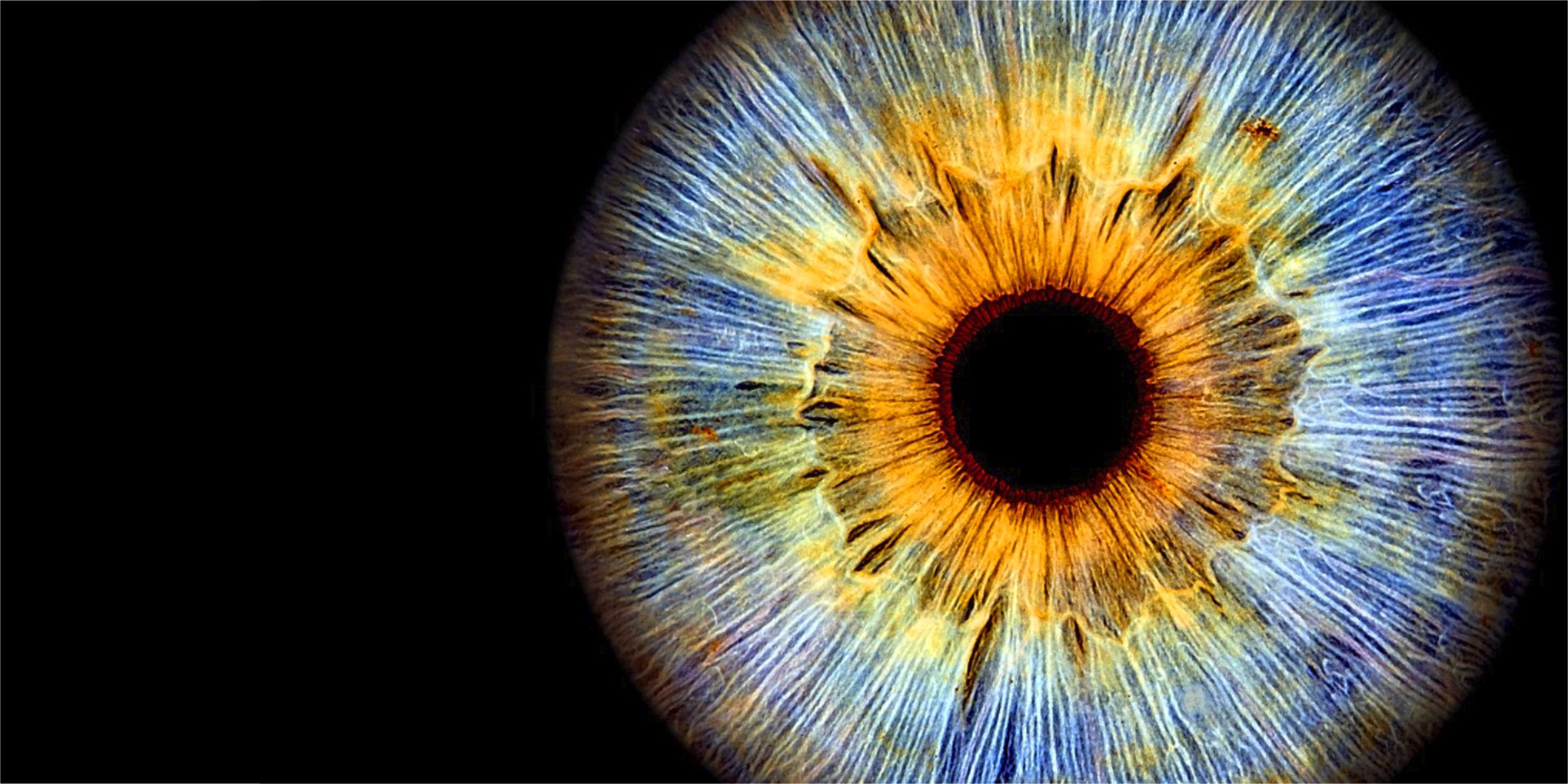 Iris Fotografie Schorndorf Stuttgart und Umgebung das Tor zur Seele Kunstvoll verpackt einzigartiger als ein Fingerabdruck Regenbogenhaut persönlich Geschenk