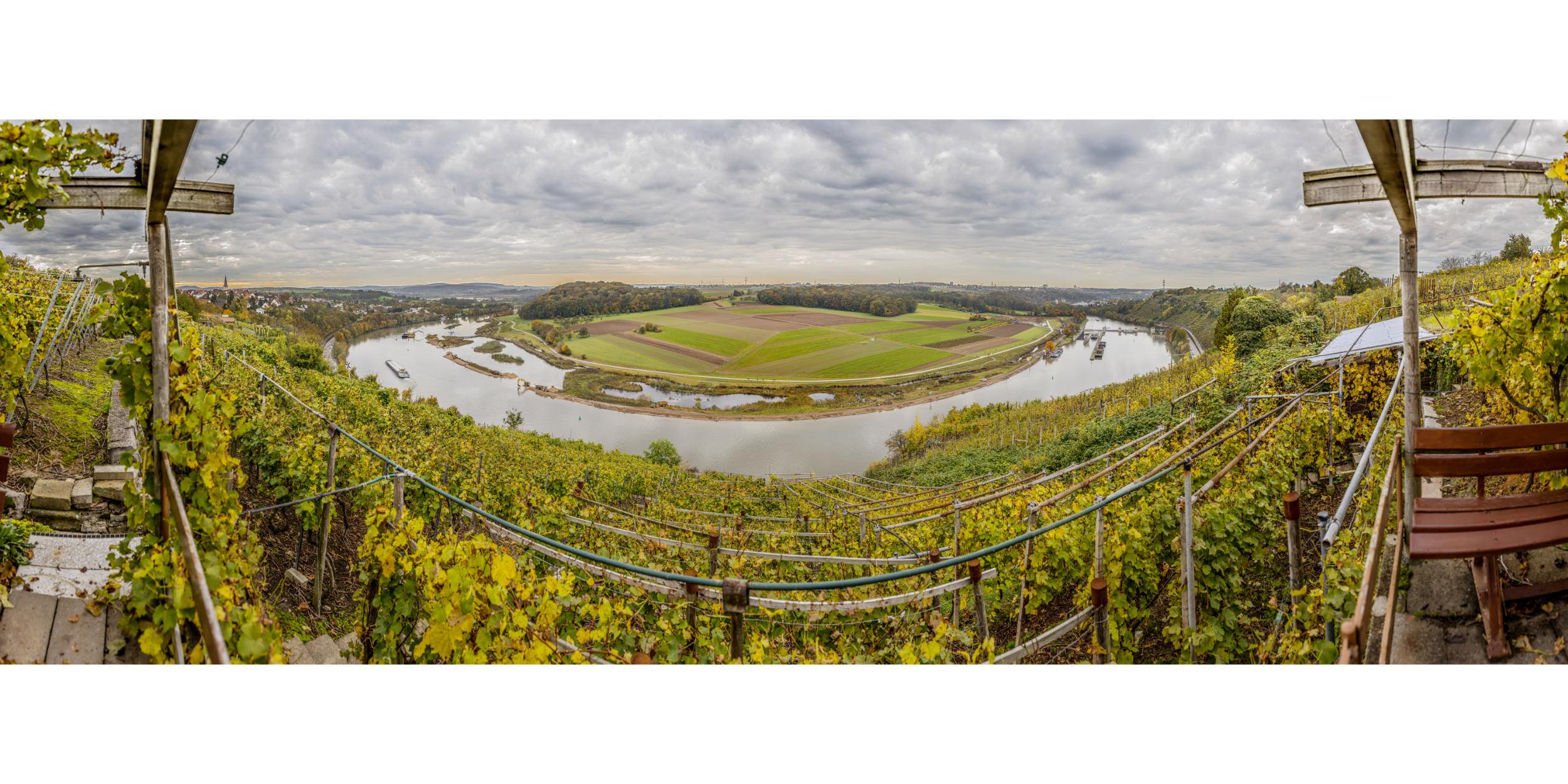 Panoramafotografie Virtuelle Touren 360Grad Fotografie Stuttgart und Umgebung 180° Teilpanorama Poppenweiler Neckar Biotop Fischweg Fischtreppe Renaturieren